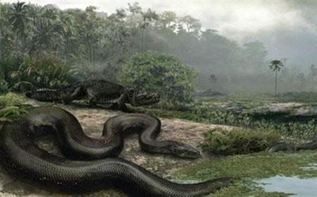 snake sizes giant snake